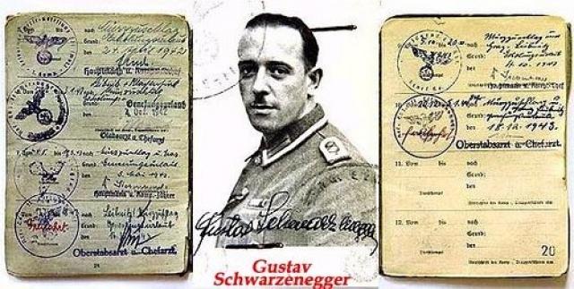 После аншлюса Австрии в 1938 году Густав Шварценеггер вступил в гитлеровскую партию и в отряд штурмовиков. Во время войны он служил в фельджандармерии, где получил чин старшего сержанта. После ему все же было разрешено работать шефом местной полиции, поскольку не было доказательств совершения им каких-либо военных преступлений.