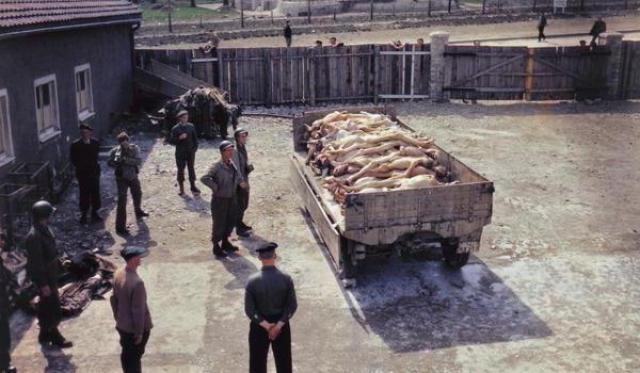Американцы заставили немецких гражданских лиц осмотреть лагерь, оказали помощь узникам и привезли журналистов, чтобы мир узнал о преступлениях нацизма.