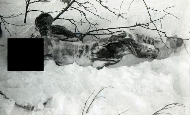 Он был одет в лыжные брюки, кальсоны, свитер, ковбойку, меховую безрукавку. На его правой ноге носок был шерстяным, на левой - хлопчатобумажным. Наручные часы остановились в 5:31. Эксперты сделали вывод, что перед смертью он дышал в снег, поскольку на лице был ледяной нарост.