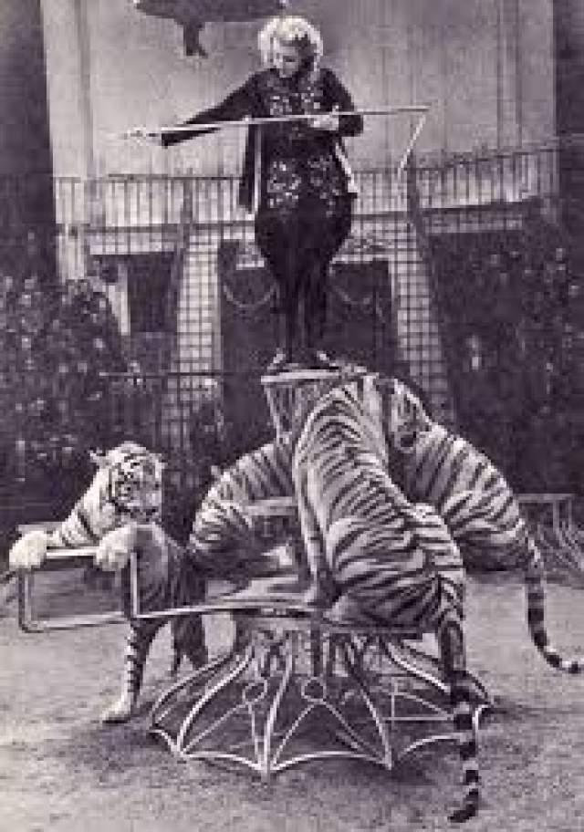 После похорон Маргарита провела в психиатрической больнице полтора года, а когда все же вернулась на цирковую арену, рядом всегда дежурил психиатр с медикаментами. Из профессии она ушла после того, как разбился тигр, с которым она раскачивалась на качелях под куполом цирка.