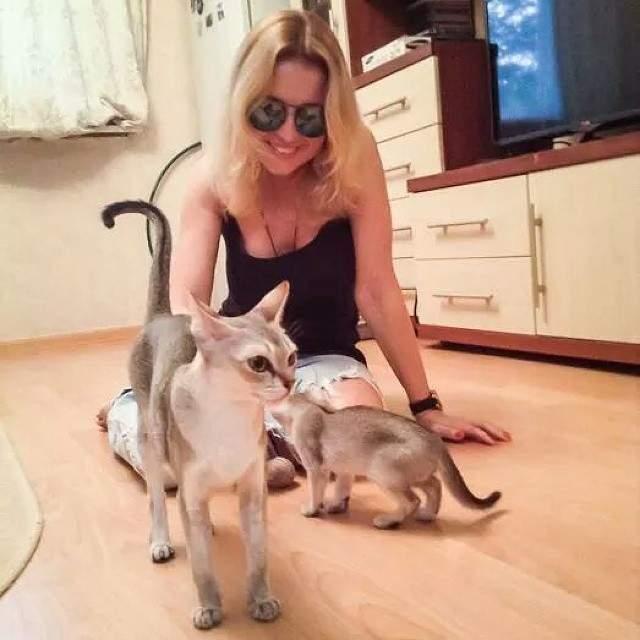 Нюся и Ося - питомцы Анжелики Варум. Похожая на инопланетянку сингапурская кошка Нюся, к примеру, - частая гостья на фотоснимках певицы в соцсетях.