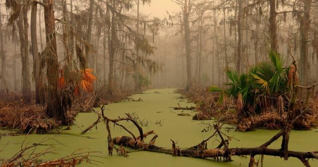 """Болота Манчак, Луизиана. Эти места неподалеку от Нью-Орлеана еще называют """"болотами призраков"""". Говорят, что болота прокляла королева вуду, когда ее взяли в плен в начале XX века, а в урагане 1915 года здесь исчезли три деревушки."""
