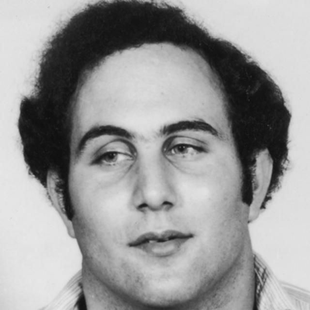 """В письмах в газеты Берковиц угрожал жителям Нью-Йорка, утверждая, что """"работает"""" по указке некоего Сэма, который ненасытен, а потому убийства будут продолжаться. """"Привет из трущоб города Нью-Йорка, провонявших собачьим дерьмом, блевотиной, прокисшим вином, мочой и кровью!"""""""