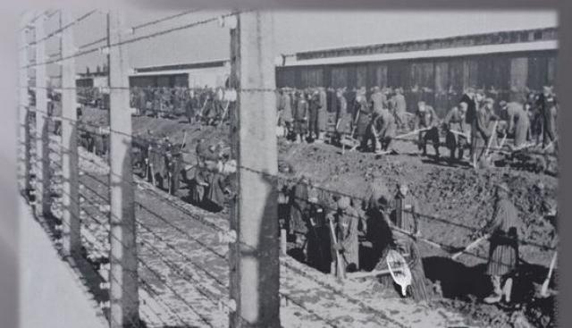 15 июля 1937 года на гору Эттерсберг, в северный район Веймара прибыли строители, которых сопровождали полицейские с собаками. Это были заключенные из концлагеря Заксенхаузен, которым и было приказано построить Бухенвальд.