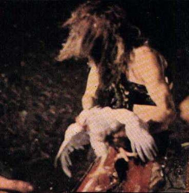 Она упала в первые ряды, где зрители начали разрывать ее на куски. Инцидент был освещен во многих изданиях. Позже история перерасла в легенду о том, что Купер на сцене оторвал курице голову и выпил ее кровь.
