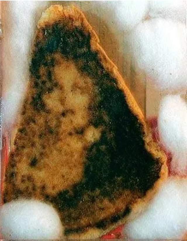 Жареный сэндвич с сыром. На нем якобы проявилось изображение Девы Марии. Блюдо продали за 28000$ в 2004 году.