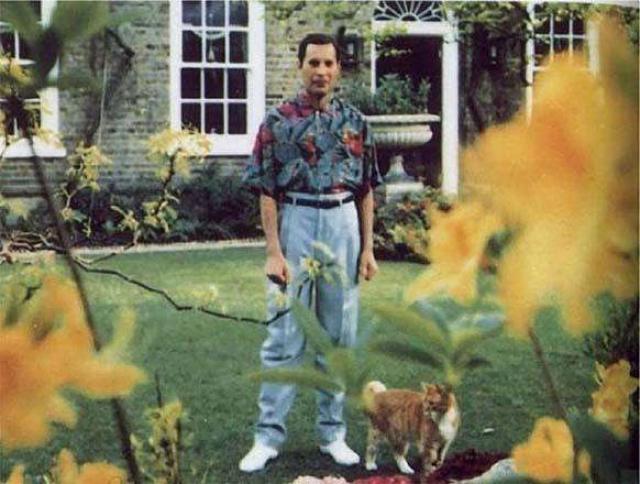 Фредди Меркьюри. Последнее фото рок-звезды сделано в 1991 году, чуть позже он скончался от бронхиальной пневмонии на фоне СПИДа