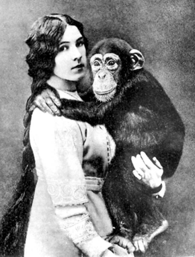 """На основе наблюдений за Руди и Иони появилась книга """"Дитя шимпанзе и дитя человека"""" – первое в мире сравнительное описание психики обезьяны и homo sapiens."""