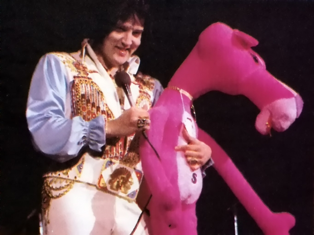 На фоне всех этих проблем Элвису приходилось активно выступать на сцене: с 1969 по 1977 годы он дал около 1100 концертов в США. При этом и к творчеству он испытывал явное охлаждение.