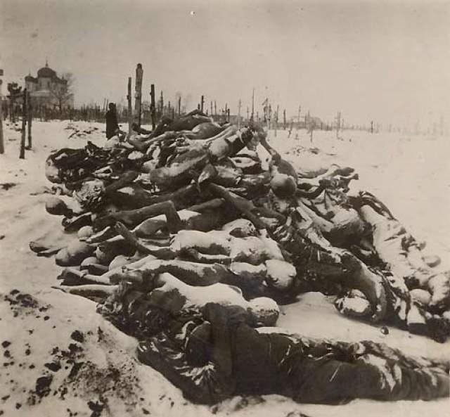 В Поволжье и Приуралье к концу 1922 года жертвами голода стали от пяти до десяти миллионов человек.