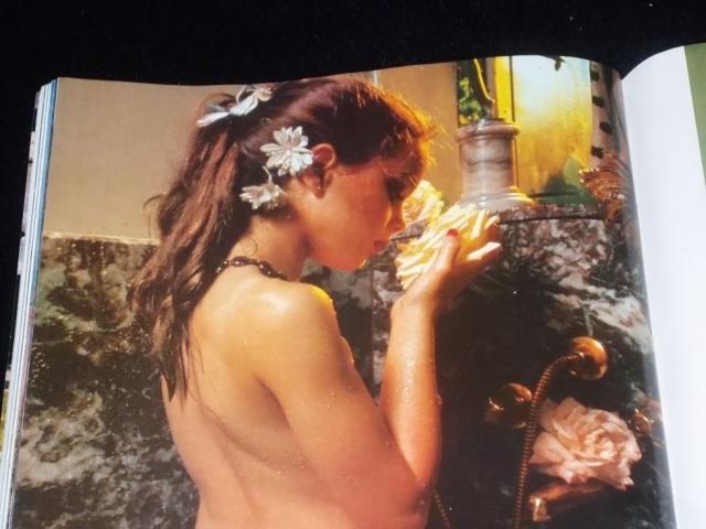 """В 1975 году Брук с одобрения своей матери приняла участие в откровенной эротической фотосессии Гарри Гросса для """"Playboy Press"""", снявшись совершенно обнаженной. Впоследствии она много лет пыталась отсудить у журнала права на фото и негативы, но проиграла."""