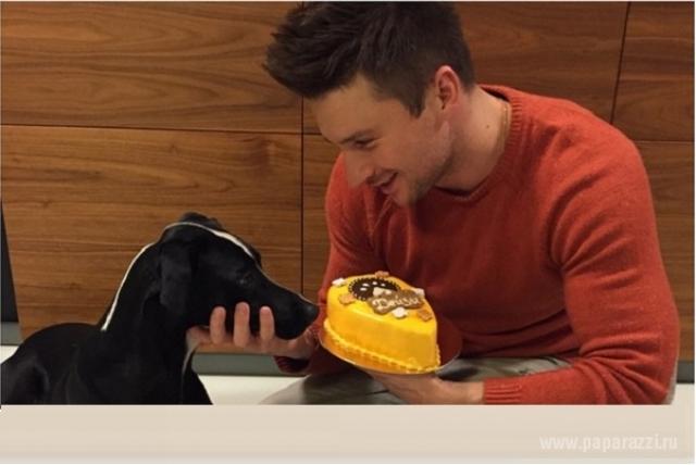 А вот Сергей Лазарев открыл собачью кондитерскую! Теперь каждый может порадовать любимца мясным тортиком в день рождения.