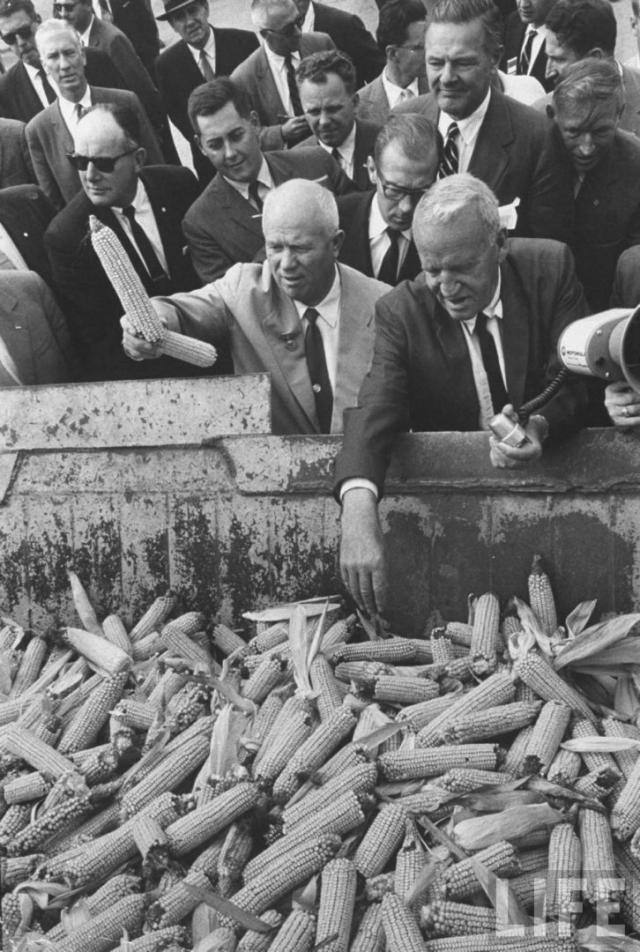"""Кукурузная кампания не оправдала себя и полностью провалилась, вторым хлебом """"царица полей"""" так и не стала, поскольку климат в нашей стране не совсем подходящий. После этйо эпопеи к Хрущеву так и привязалась кличка """"Никита-кукурузник""""."""