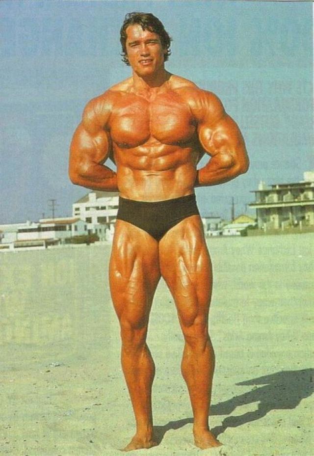 Шварценеггер занесен в книгу Рекордов Гиннеса как мужчина с самым совершенным телосложением среди всех людей, когда-либо живших на Земле.