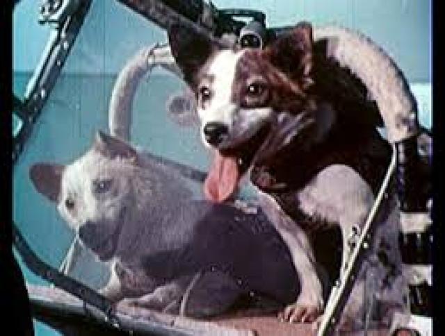 В 11:44 по московскому времени со стартового комплекса № 1 (ныне Гагаринский старт) был осуществлен успешный запуск второго космического корабля-спутника на орбиту.