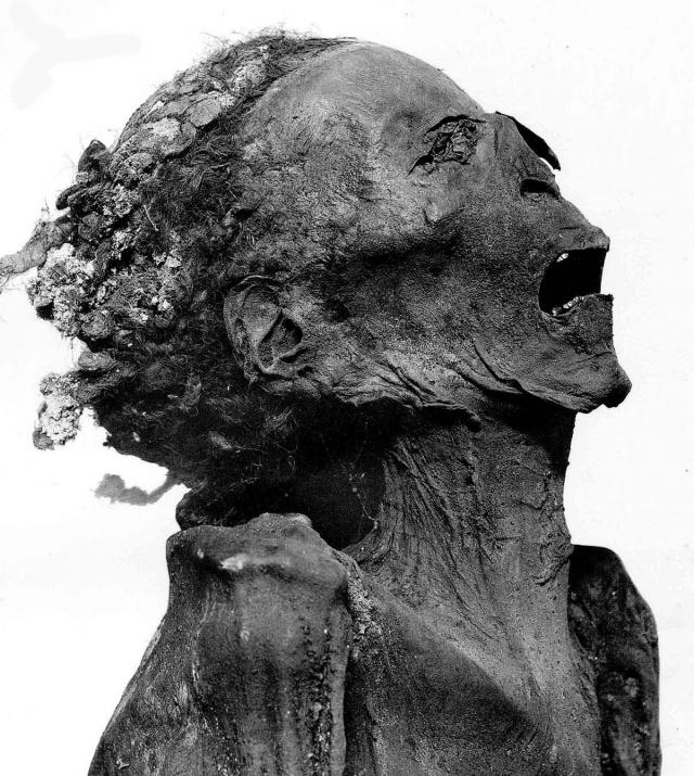"""""""Наказание стеной"""". Казнь была изобретена в Древнем Египте: египетские жрецы замуровывали человека в стене подземелья, и казнимый таким образом попросту погибал от удушья."""
