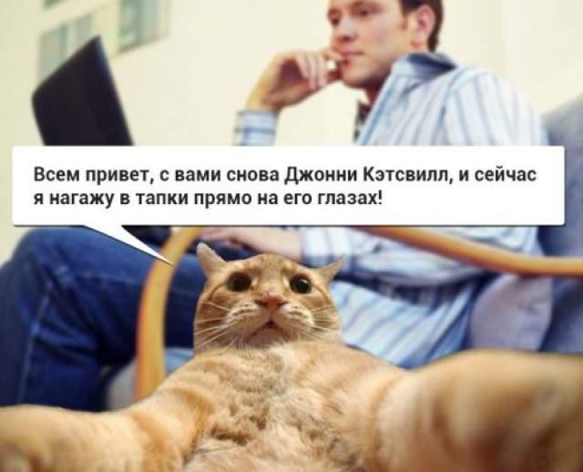 Количество фотоколлажей с участием кота, который будто бы собирается совершить нечто безбашенное, просто бесконечное.