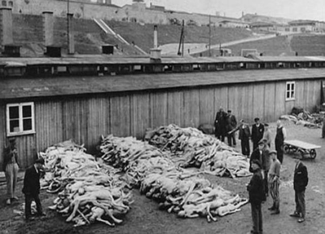 Снимок с уложенными на прицепе трупами узников Бухенвальда сегодня хранится в Национальном архиве Вашингтона.
