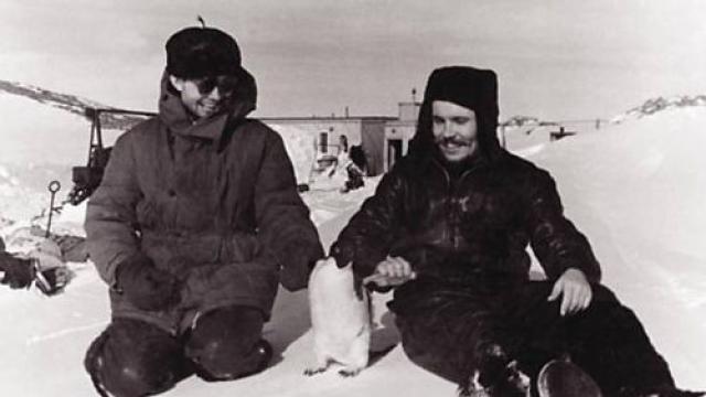 У молодого доктора, работавшего на антарктической станции, начался острый приступ аппендицита, а из-за плохой погоды вывезти больного оказалось невозможным.