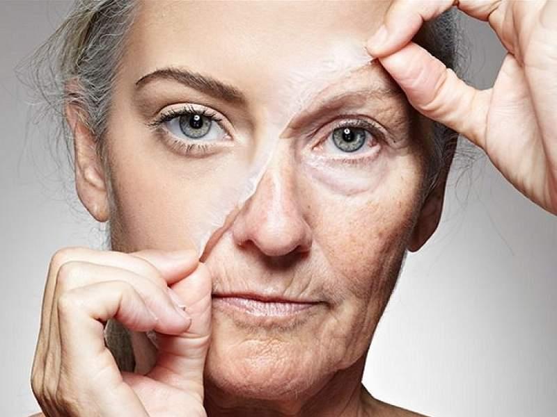 Новости дня: Ученые назвали три этапа старения человека