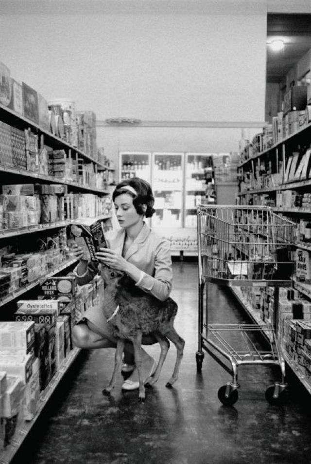 Одри Хепберн в супермаркете со своим домашним любимцем.