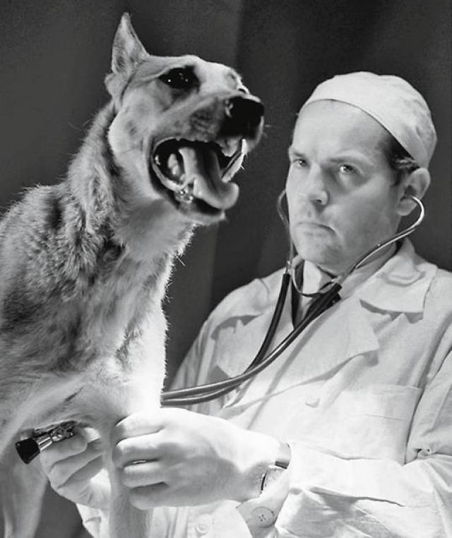 Операция стала мировой сенсацией, позволившей начать делать пересадку сердца человеку.