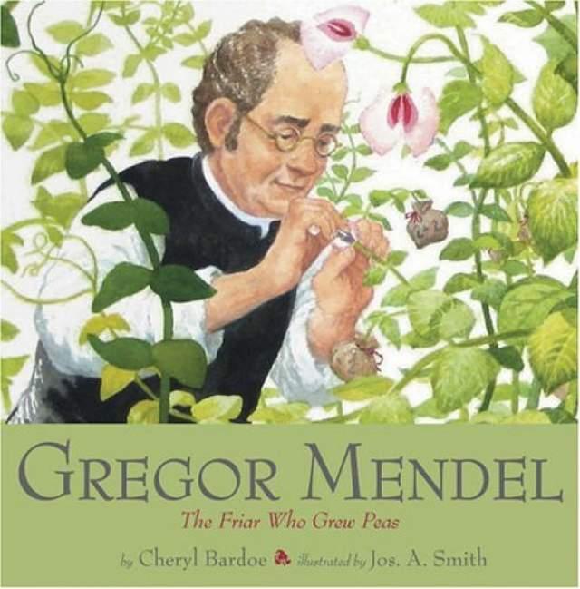 """Грегор Иоганн Мендель. Основатель генетики был много раз осмеян современниками за """"дурацкие опыты с горохом"""": с помощью растения он пытался узнать, как передаются по наследству признаки."""